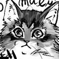 妄想同居猫