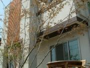 built of wood -住友林業の家-