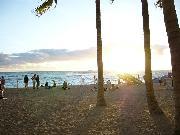留学生が語るハワイ