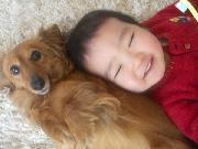 ひまわりと愛犬さくら二人の小さなあしあと