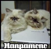 Hanpamono(おいちゃんとゆかいな仲間たち)