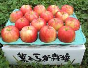 りんごのブログ〜青森〜