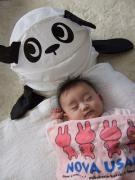 さくらパンダ育児ブログ(2006)