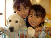 娘二人と盲導犬パピー『フラッグ』の成長記録