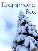 Takaramono-Box