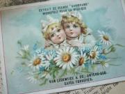 Antique Postcard Library