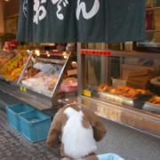 高円寺「まるごとマイタウン東京」ブログ