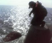 ちょいサルおやじの「筏チヌ釣り道場」