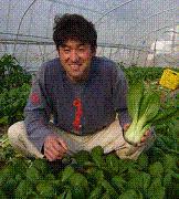 美食グルメ☆究極の食材を目指して☆現役農家のページ