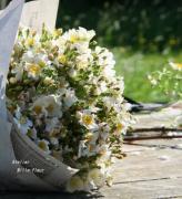 Mille-fleur style
