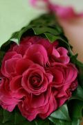花とライフスタイル通信