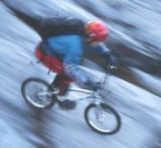 山で乗ってこそマウンテンバイク