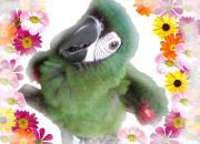 まねき鳥☆