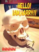 !!!HAPPY!HARRY!HAPPY!!!