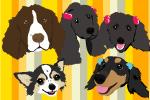 パピプー家族と他4犬種 =8わんころ達