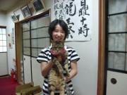 猫ブランドの富士山麓御招待劇場