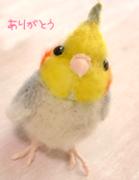 手作り小鳥hato*hana^v^