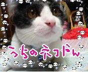 タケちゃん*ブログ