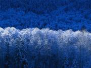 仲江太陽の『回復への道』日記