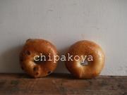 Chipakoya