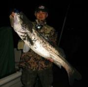 釣り道楽日記