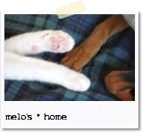 melo's * home