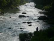 秋川のヘタレ竿