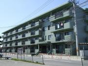 新潟市のお部屋探しなら「ハウスパートナー」