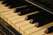ピアノバー・ジュネスのひとりごと