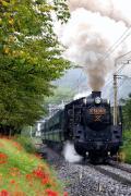 のんびり気ままに〜光の鉄道写真ブログ