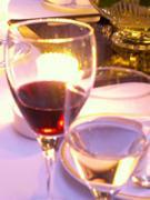 ワイン グラッパ −世界のワイン グラッパ−