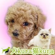 犬kura猫kuraの毎日