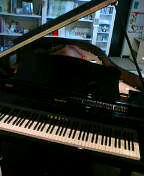 犬とピアノと猫2匹
