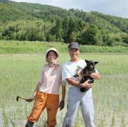 どじょっこ田んぼ〜佐渡で始める、無農薬米づくり〜