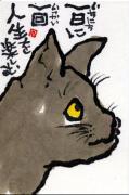 猫と絵手紙のアンビバレントな日々
