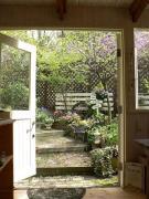 Mimosa Garden*Diary