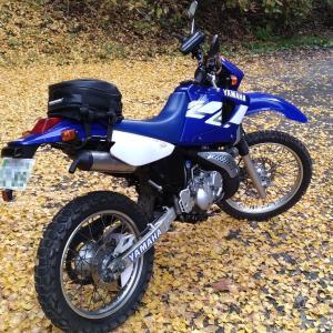 バイクで神社巡り♪時々山登り