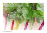野菜ソムリエtamitanのブログ