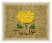 *Tulip Garden*