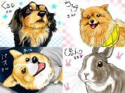 岡山犬(おかやまけん)・・・3匹と・・・うさぎ1羽