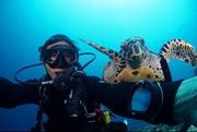 ☆バリ島 ダイビング&オーシャンライフ