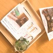 キボシカメさん&ヘルマン亀さん飼育日記