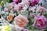Rose Gardenを夢見て