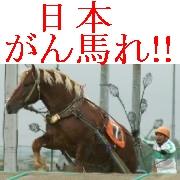 馬の写真with余計な一言