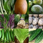 沖縄の島野菜