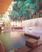 森林浴露天と囲炉裏の宿