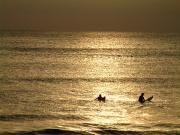 サーフィンをしてサーファーになる。