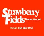 Strawberry Fields Blog