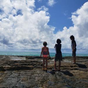 Hawaii Times