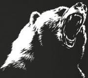 クマ出没情報ブログ